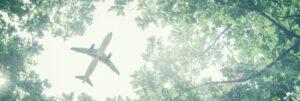 green_plane